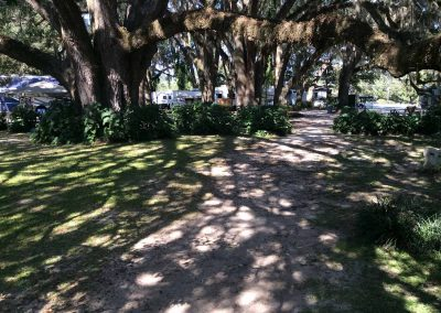 big-oak-rv-park-florida