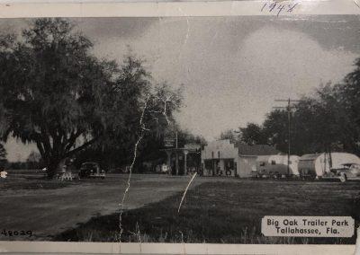 old-photo-big-oak